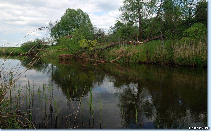 Река Сара