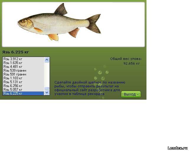 календарь рыбалка байкал