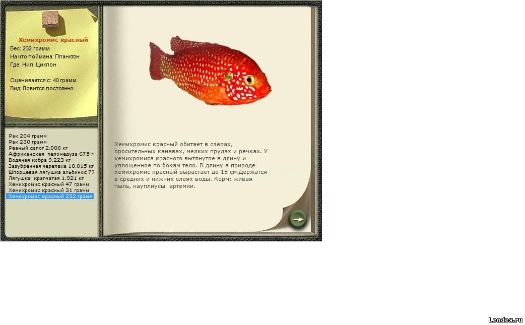 планктон для ловли толстолобика своими руками