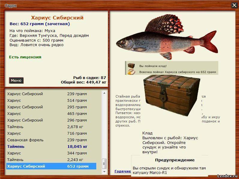 какую рыбу можно ловить в коми