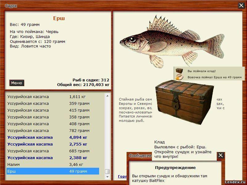 ловля рыбы описание