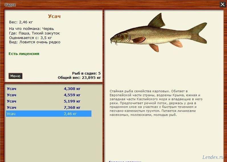 русская рыбалка паша