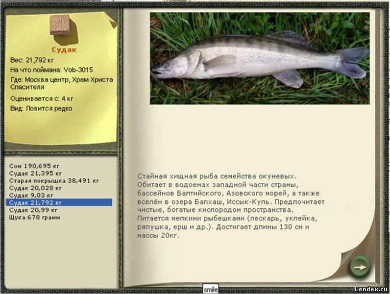 программа для рыбалки дон