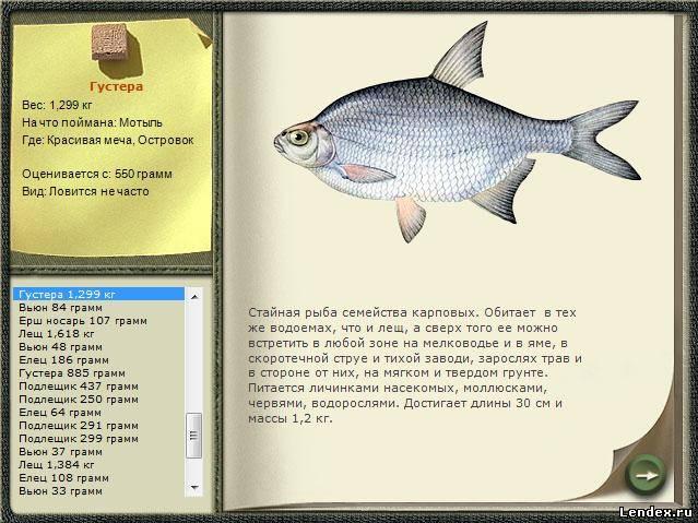 маленькая рыбка для ловли большой сканворд