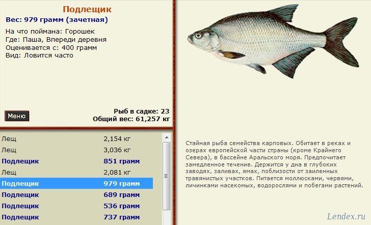 русская рыбалка форум