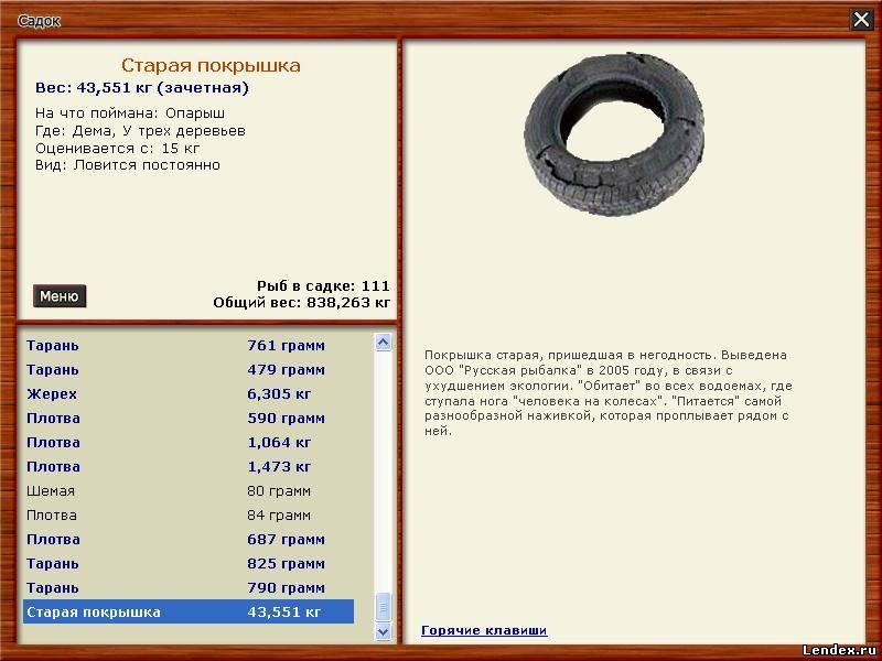 никакое, лопасня русская рыбалка 3 термобелья предлагают огромный