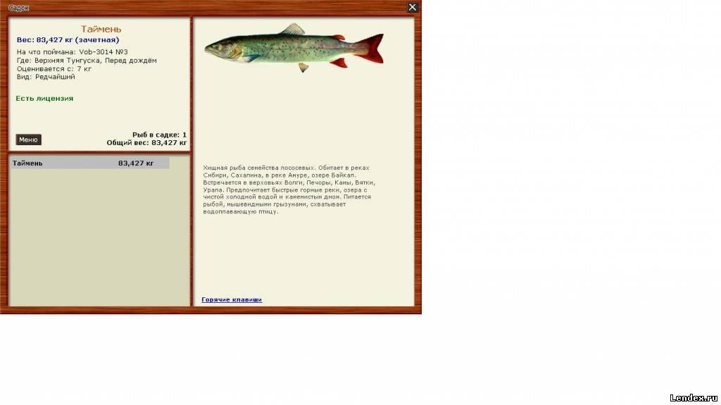 ленок подкаменная тунгуска рыбалка 3.6