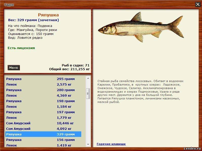 русская рыбалка 3 паша триада