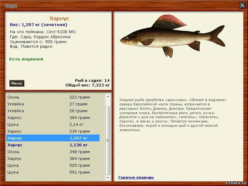 виды ловли хищной рыбы