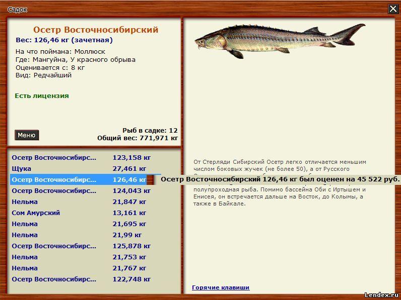рыбалка на осетров в башкирии