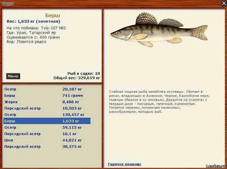 русская рыбалка клевала