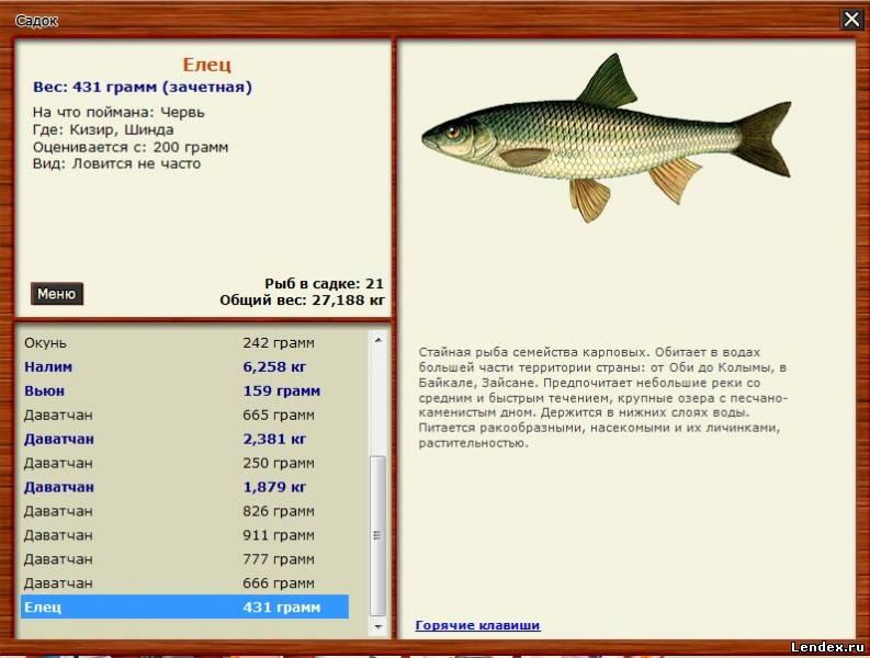 триал русская рыбалка форум