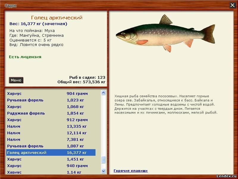 на что можно ловить рыбу в террарии