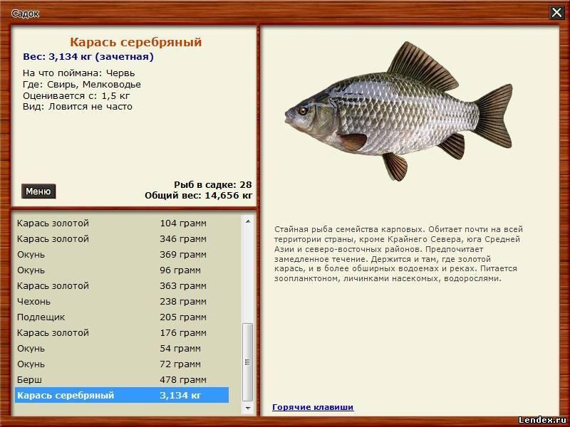 где ловить рыбу на юге ленинградской области