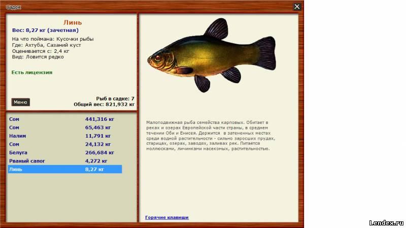 линь деревенские просторы рыбалка 3.6