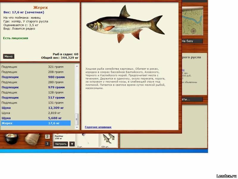 ладога.озерная форель.русская рыбалка
