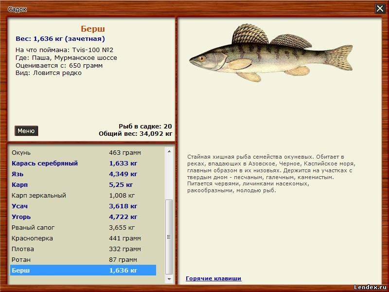 на что клюет рыба в клязьме
