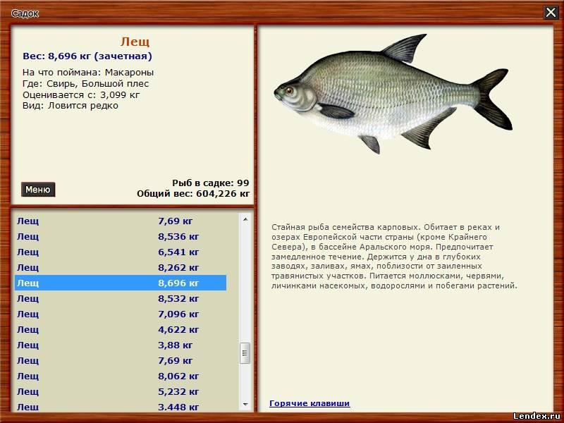 прогноз клева рыбы в таре