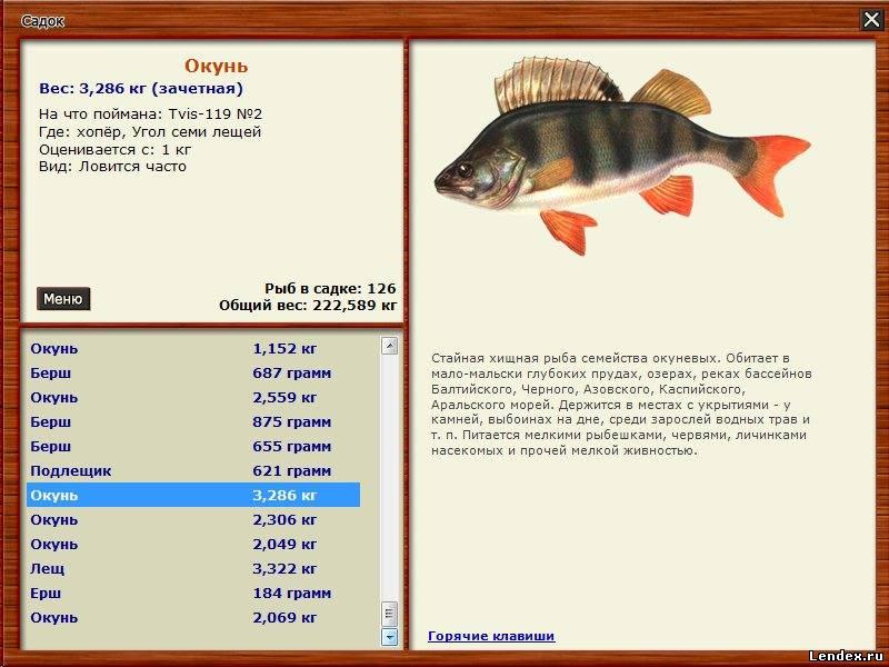 русская рыбалка 3 подкаменная