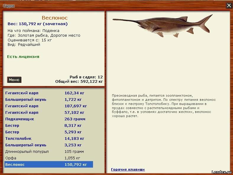 Русская рыбалка 3 как ловить в полводы