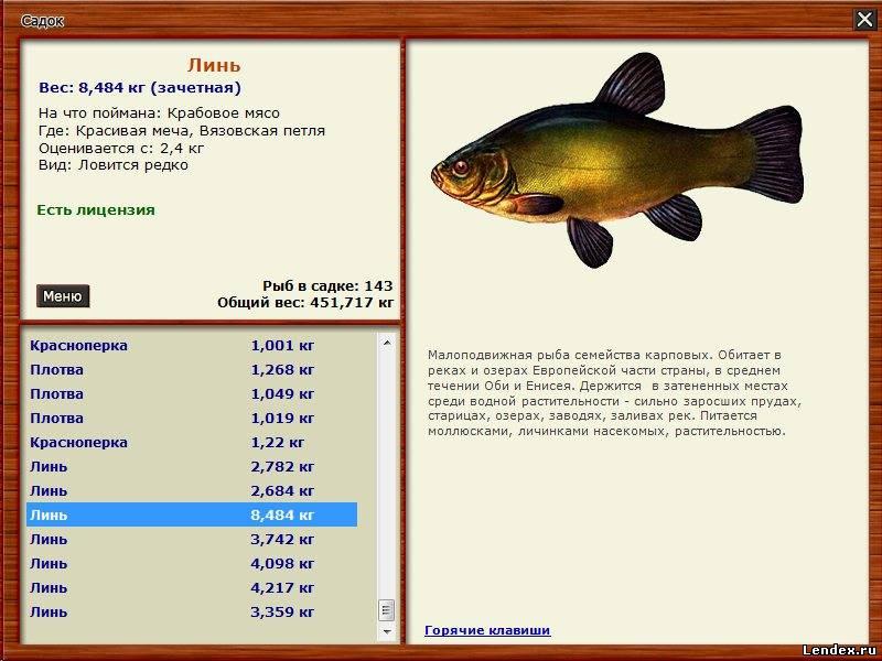какую рыбу можно ловить в ахтубе и чем