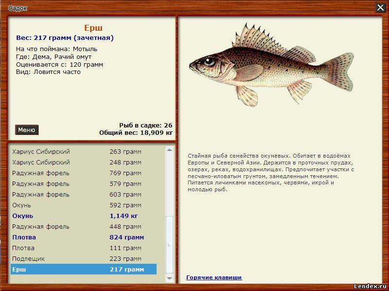 Как в русской рыбалке 2 сделать много денег