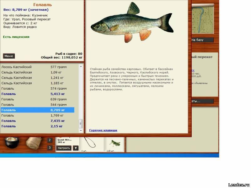 на что лучше ловить рыбу форум