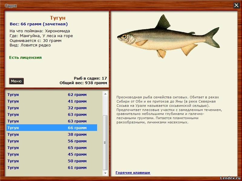 рыбалка для друзей развитие