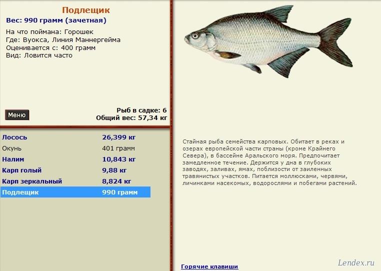 где ловить дорогую рыбу в бдо