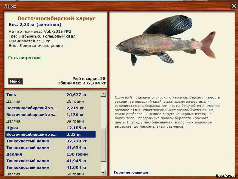 скачать патч для русской рыбалки 3