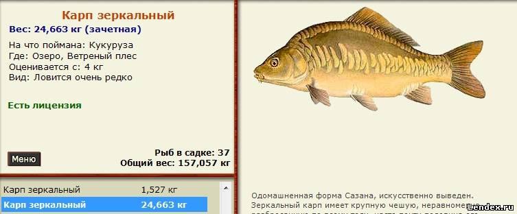 Какой размер штраф за ловлю рыбы сетями в украине 2015