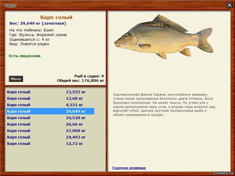 Русская рыбалка 3 как сделать раковую шейку 23
