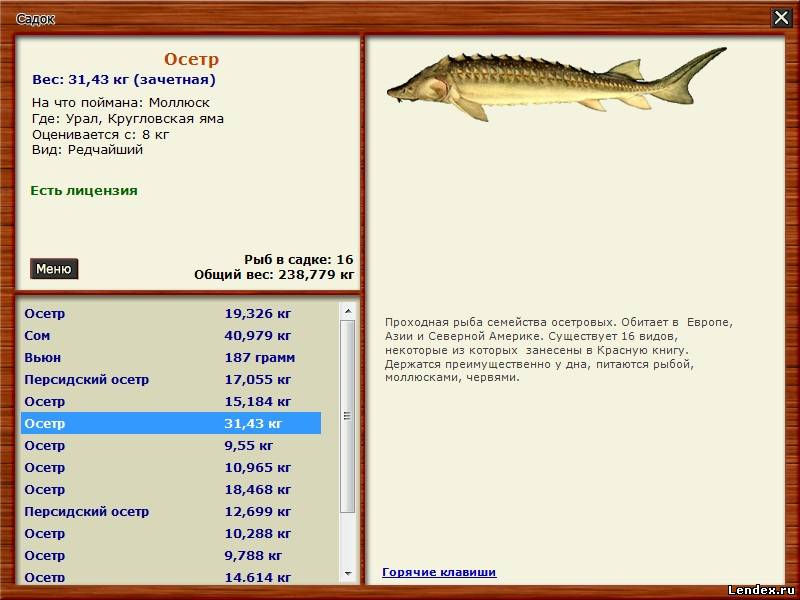 прикормка на щуку русская рыбалка 3