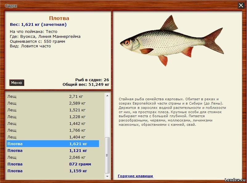 как взять лицензию для ловли рыбы