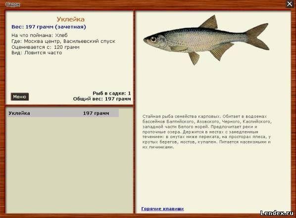 рыбалка 3 сара уклейка