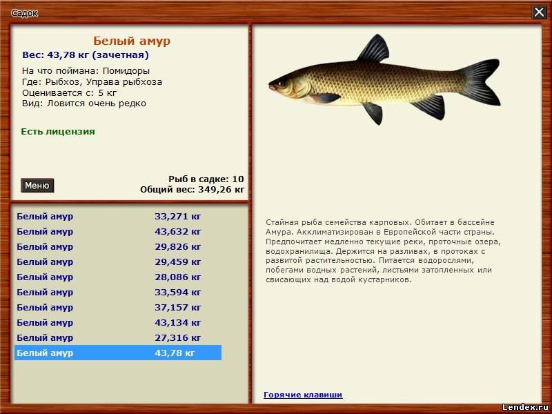 Трейнер для Русской рыбалки 2.2 * Взлом Русской Рыбалки: читы.