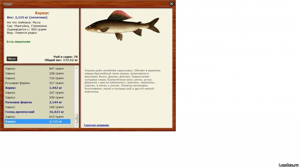 Лабынкыр 2 как ловить сома