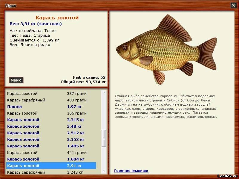 какая рыба клюет на какую наживку