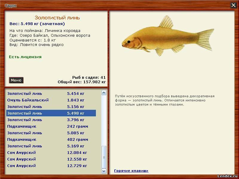 рейтинг рыб по клеву рыбы