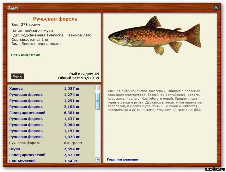 на что и где ловить лосося в