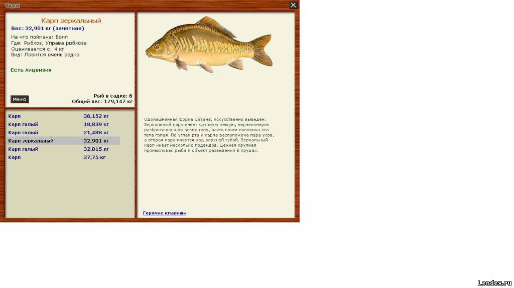 наша рыбалка как поймать рыбу
