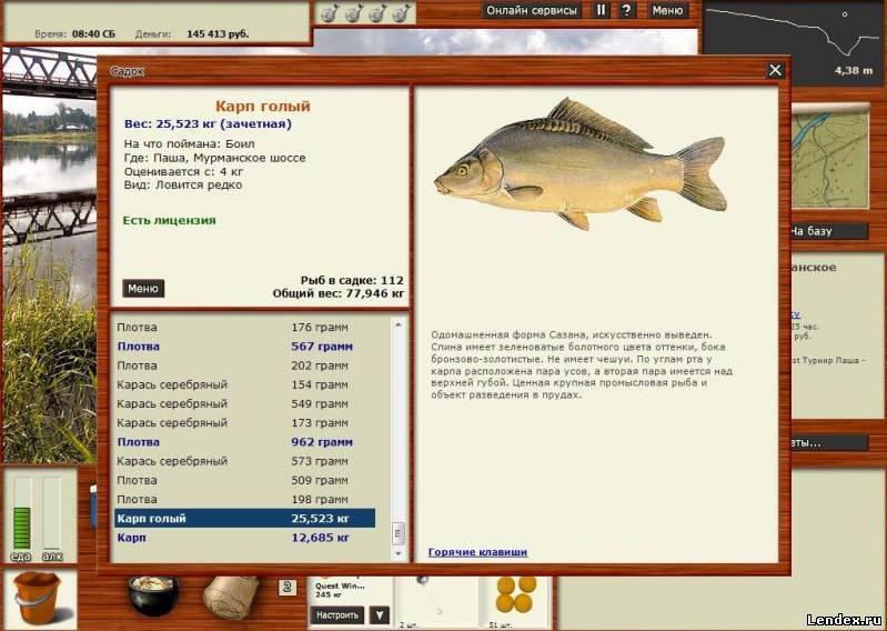 прикормка на угря русская рыбалка 3
