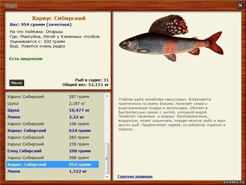 на чего лучше ловить рыбу
