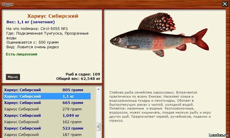 в какое время лучше клюет рыба весной