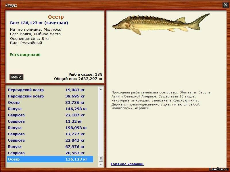как поймать толстолобика на удочку в реке