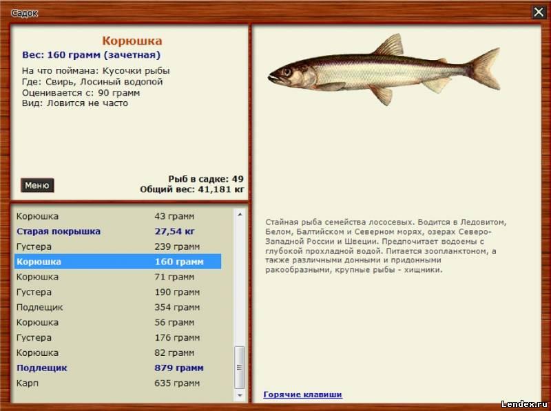 как поймать большую рыбу в русской