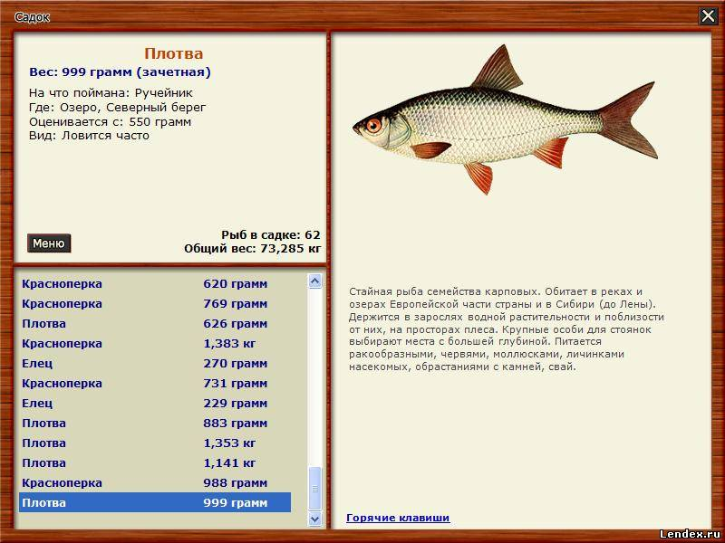 на что ловить рыбу в мае на озере