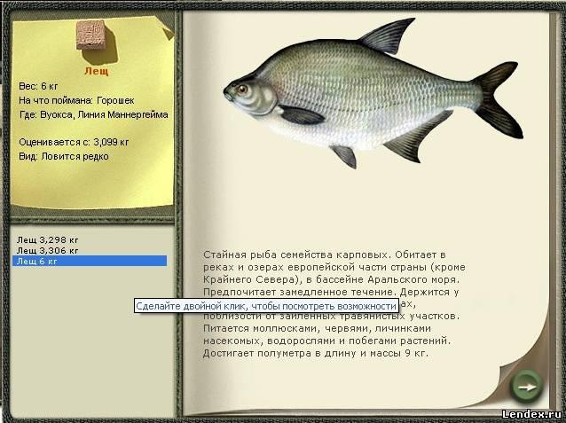 прикормка для рыбы горох кукуруза