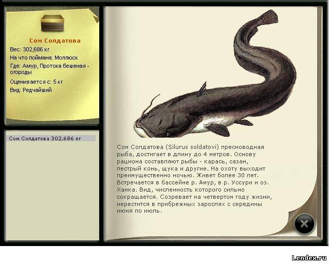 книги для рыбалка сом