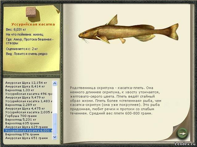 на что можно ловить морскую рыбу